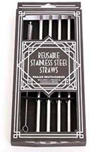 Set 4 Stainless Steel Drinking Straws
